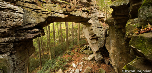 Split Bow Arch Big South Fork National Recreation Area